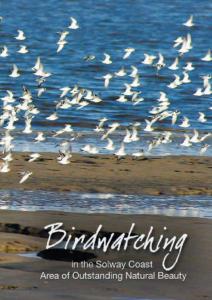 birdwatching in the aonb