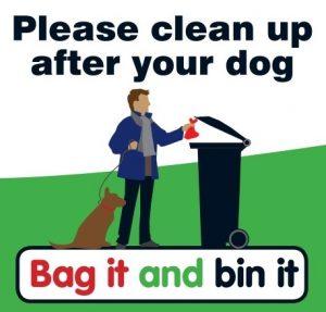 Bag it and bin it - in your black bin at home or in a litter bin.